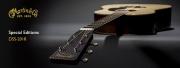 La Martin Guitar Special Edition DSS-2018