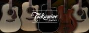 Quelle guitare Takamine choisir pour débuter ?