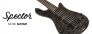 La série de basses Euro Bantam 5 cordes Spector