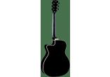 EKO Guitares acoustiques NXT-A100CWE-BLK