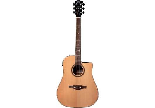 EKO Guitares acoustiques NXT-D100CWE-NAT