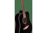 EKO Guitares acoustiques RANGER6-BLK