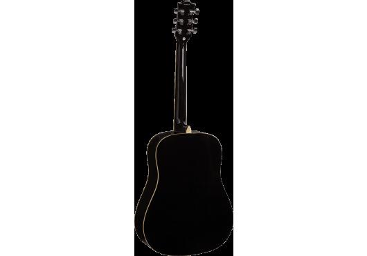 EKO Guitares acoustiques RANGER6-BWN