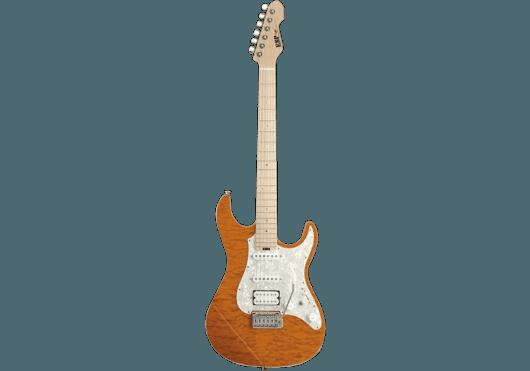 ESP Guitares Electriques ESNAPCTMBMEMG-TESB