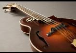 Fishman Micros pour inst. acoustique PRO-M30-0MA