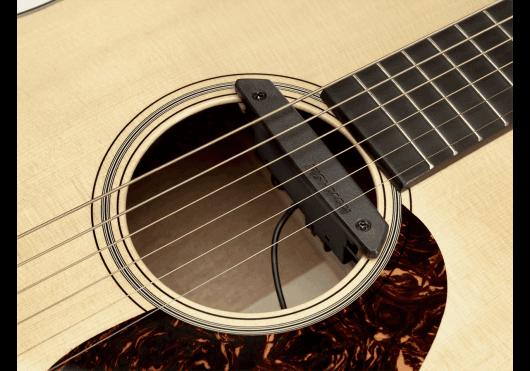 Fishman Micros pour inst. acoustique PRO-REP-102