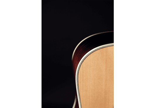 TAKAMINE Guitares acoustiques EF360S-TT