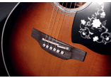 Takamine Guitares acoustiques EF450CTTBSB