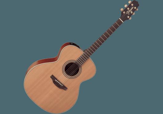 TAKAMINE Guitares acoustiques EN20