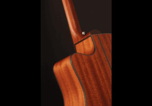 TAKAMINE Guitares acoustiques P2DC