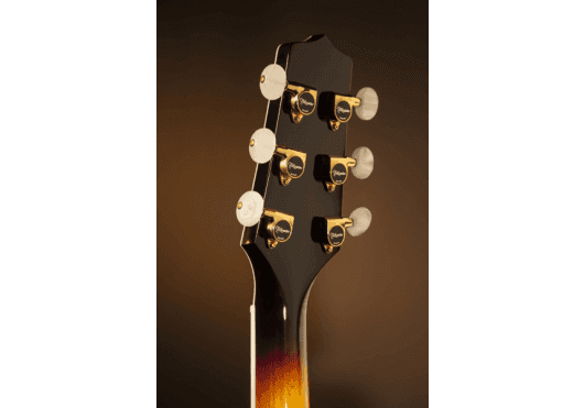 TAKAMINE Guitares acoustiques P6NCBSB