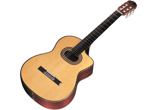 TAKAMINE Guitares acoustiques TH90