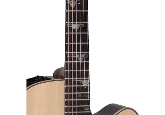 TAKAMINE Guitares acoustiques TSF48C