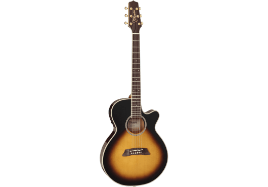 TAKAMINE Guitares acoustiques TSP138C-TBS