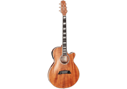 TAKAMINE Guitares acoustiques TSP178ACK-N