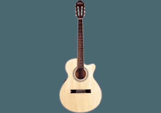 Washburn Guitares acoustiques EAC12