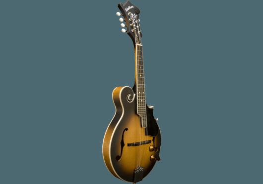 Washburn Instruments traditionnels M3EK