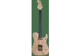 WASHBURN Guitares Electriques NELE-DLX
