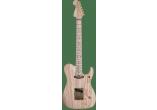 WASHBURN Guitares Electriques NELE-STD