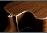 WASHBURN Guitares acoustiques WG7SCE